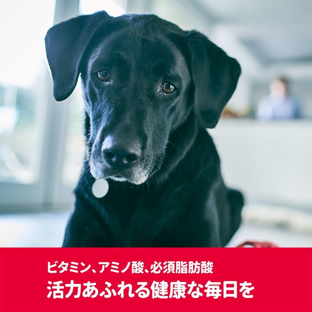 【店舗限定】サイエンス・ダイエット<プロ>犬用 (健康ガード 活力) 小粒 1~6歳 3.3kg, , product