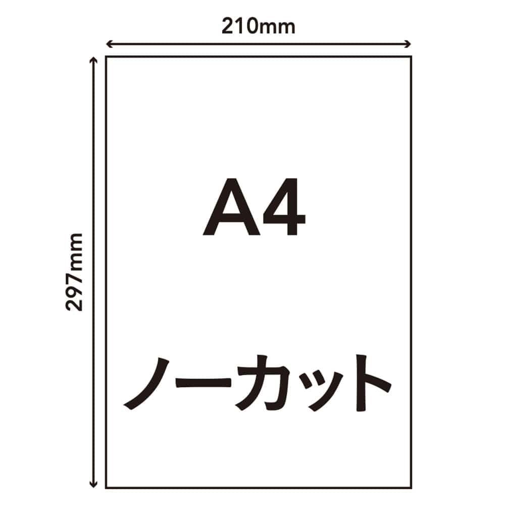 ラベルシール A4サイズ 1面×20枚入 HS-3-20, , product
