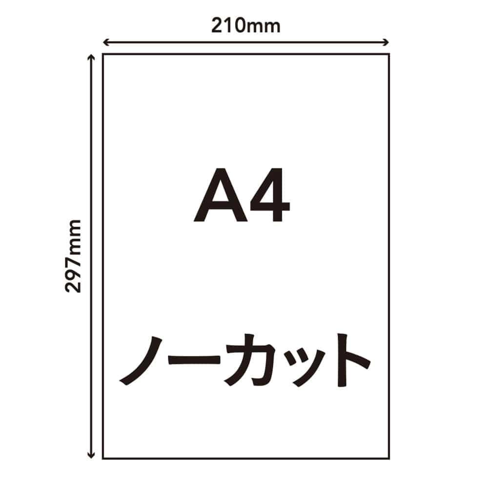ラベルシール A4サイズ 1面×100枚入 HS-3-100, , product