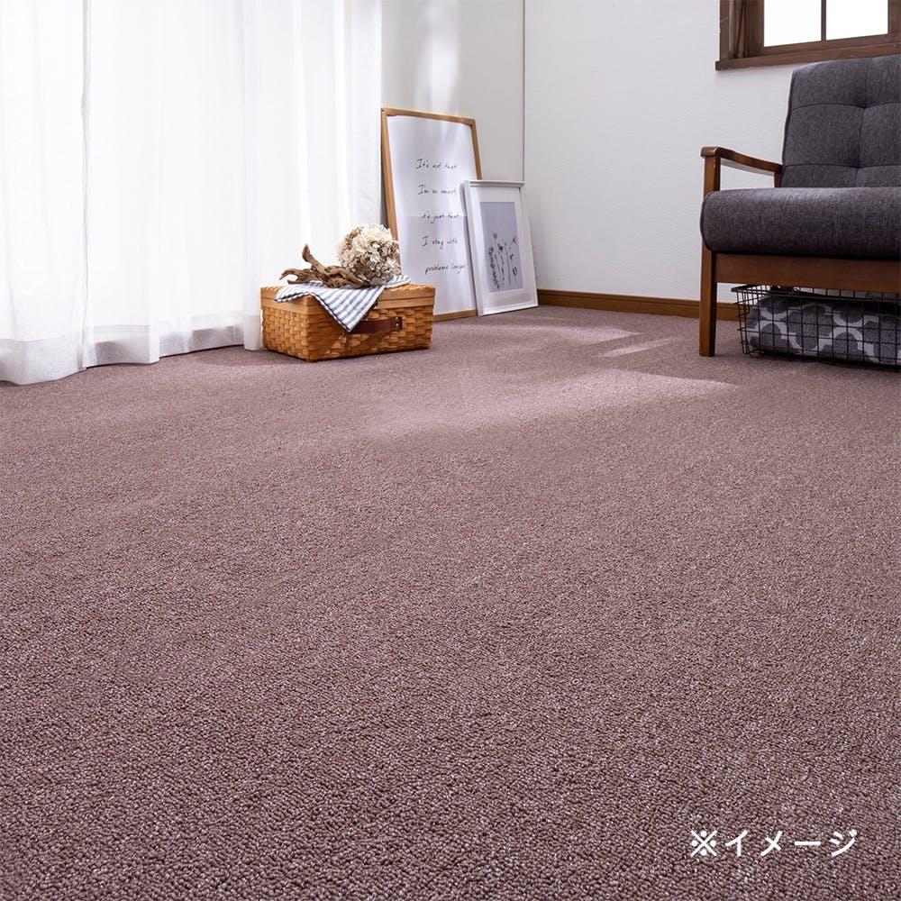 【店舗限定】汚れに強い防ダニ平織りカーペット ブラン 2畳, , product