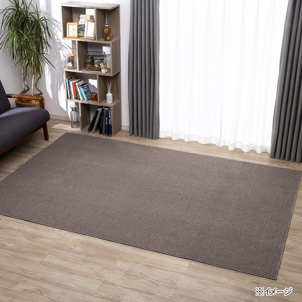 防ダニ 平織りカーペット アイン 2帖 ベージュ/ブラウン, , product