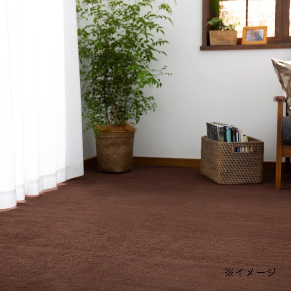 防ダニ 平織りカーペット アルティ ブラウン 2帖, , product