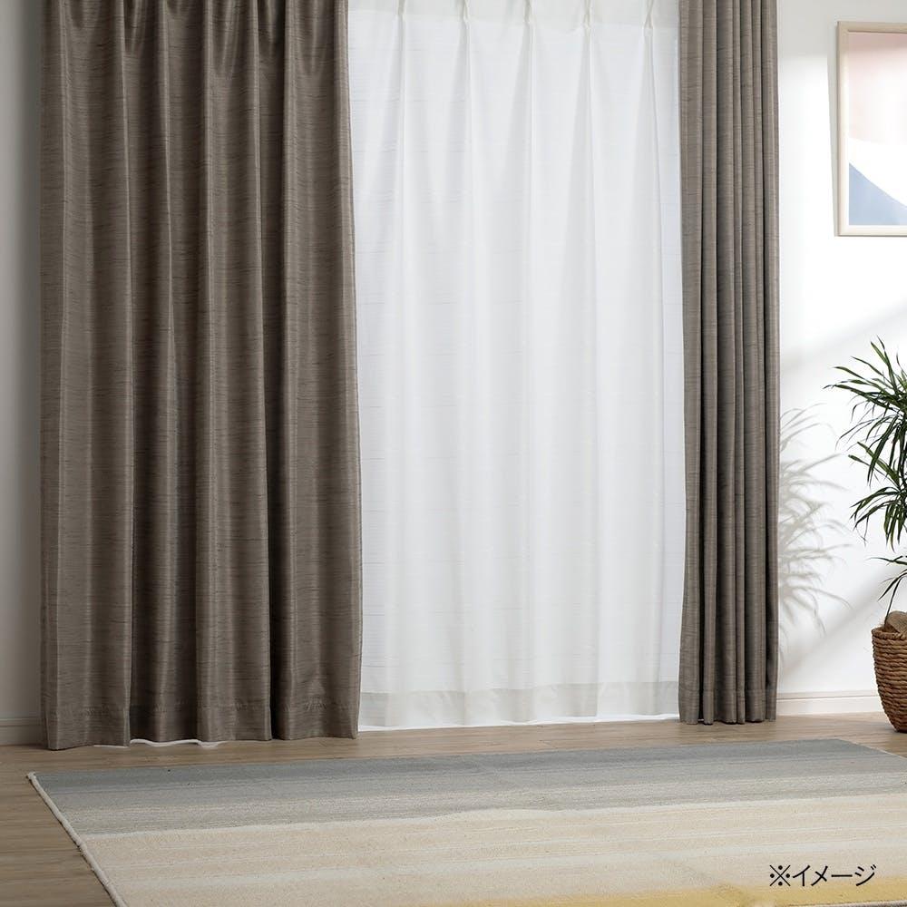 【店舗限定】汚れがつきにくい 消臭抗カビレースカーテン スーパークリーン 100×198cm 2枚組, , product