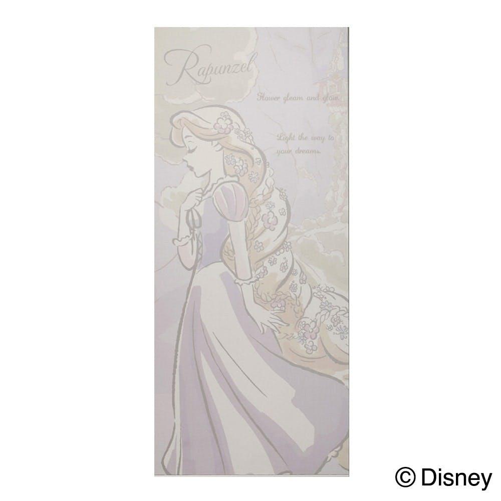 【店舗限定】ディズニー網戸貼り替えネット ラプンツェル, , product
