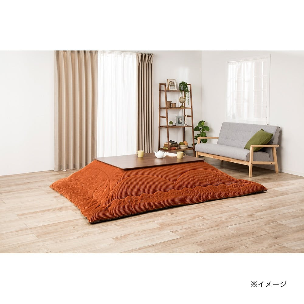【2021秋冬】洗えるこたつ掛ふとん タンネ 長方形 190×240cm, , product