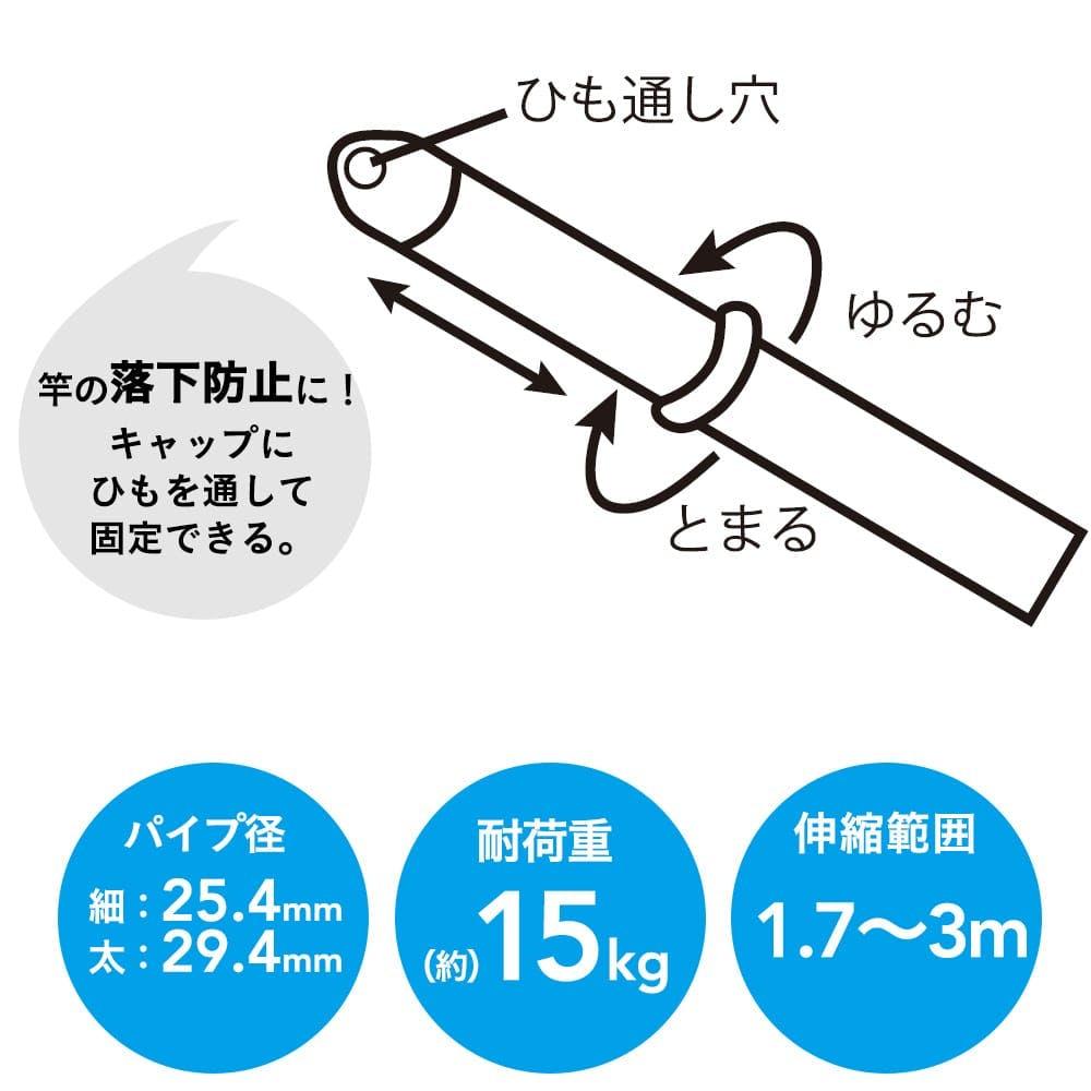 ステンレス伸縮竿 3m, , product