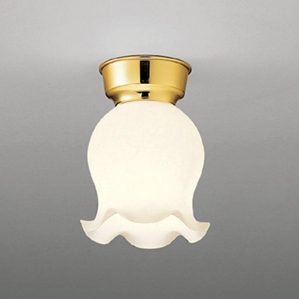 大光電機 ランプ別売照明器具カバー 廊下・内玄関灯 DXN-81057, , product