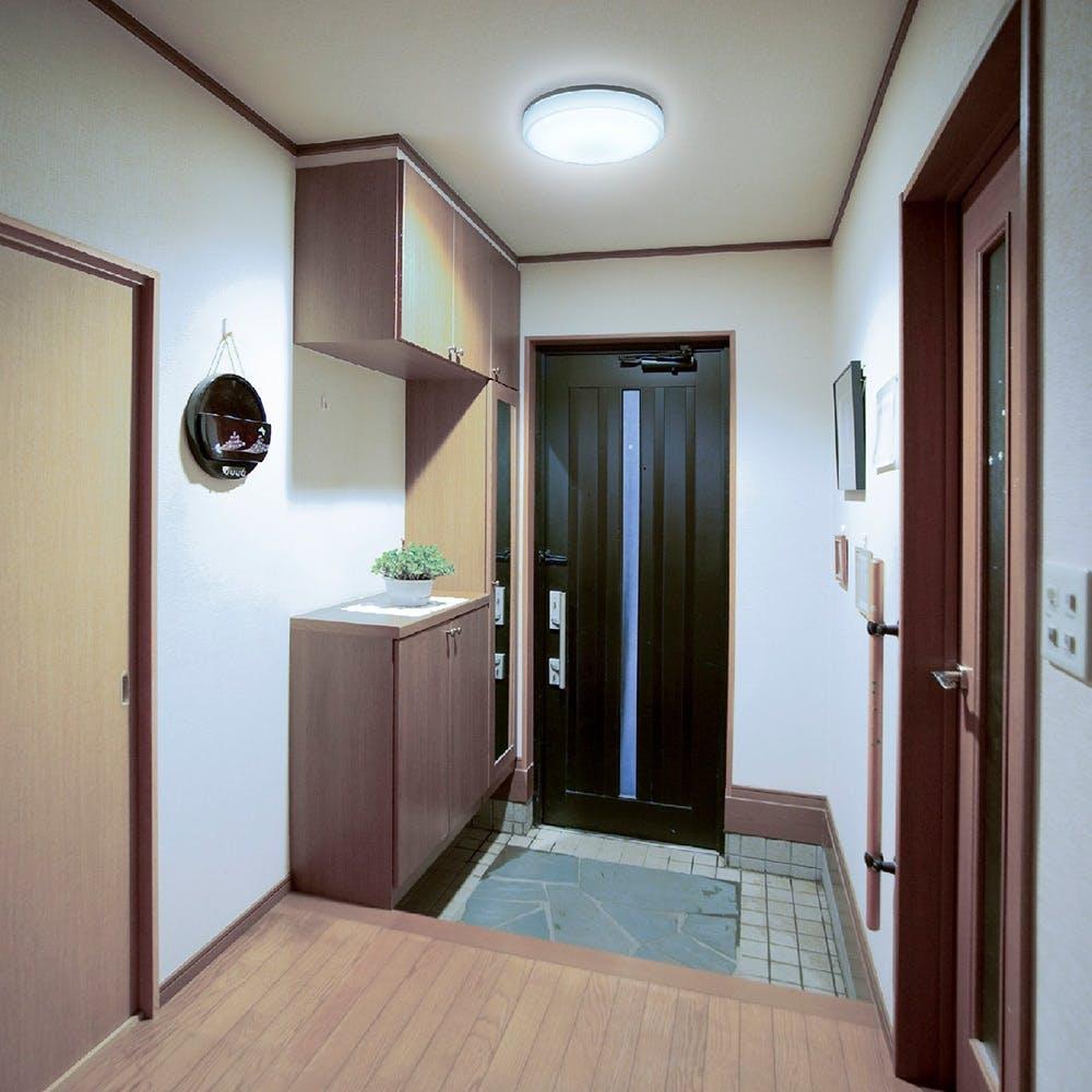 オーム電機 LED内玄関灯 センサー 昼光色 LT-Y18D-G 07-9904, , product